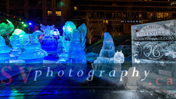 SVPhotography.ca: Bloor-Yorkville Icefest - 8th Annual &emdash;